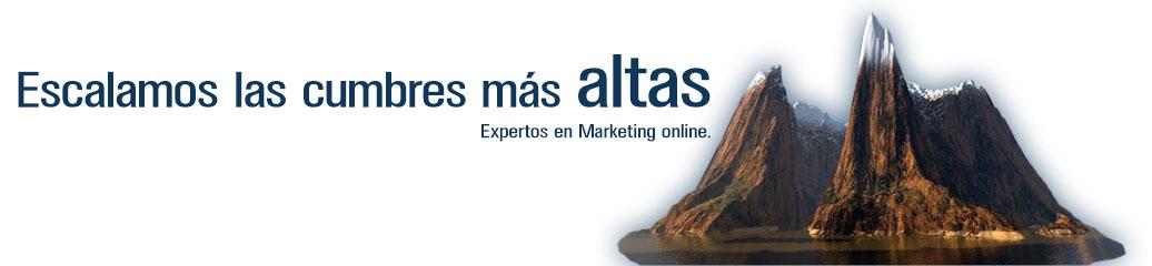 Marketing-online-Bluefactory-Studios