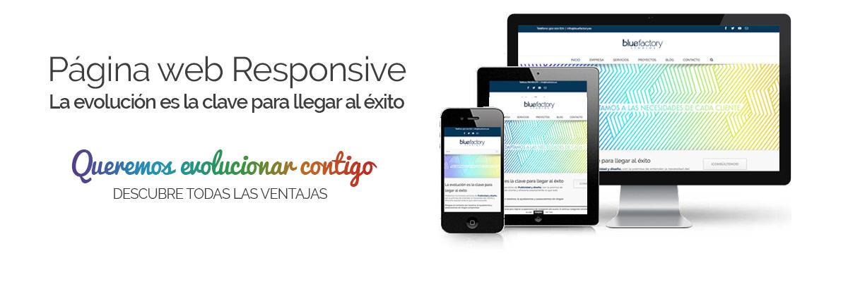 Páginas web responsive Zamora